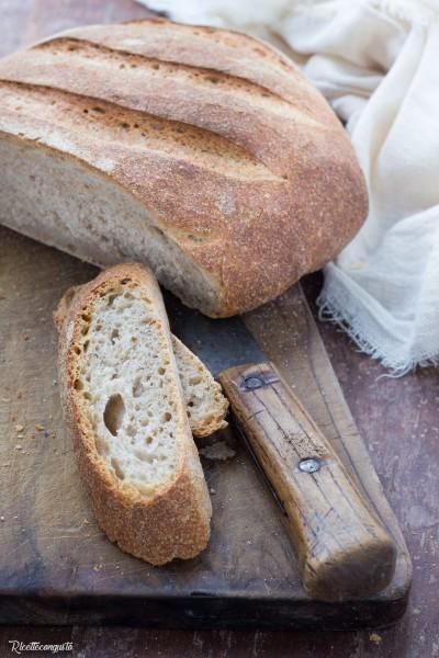 Pane con grani antichi e lievito madre