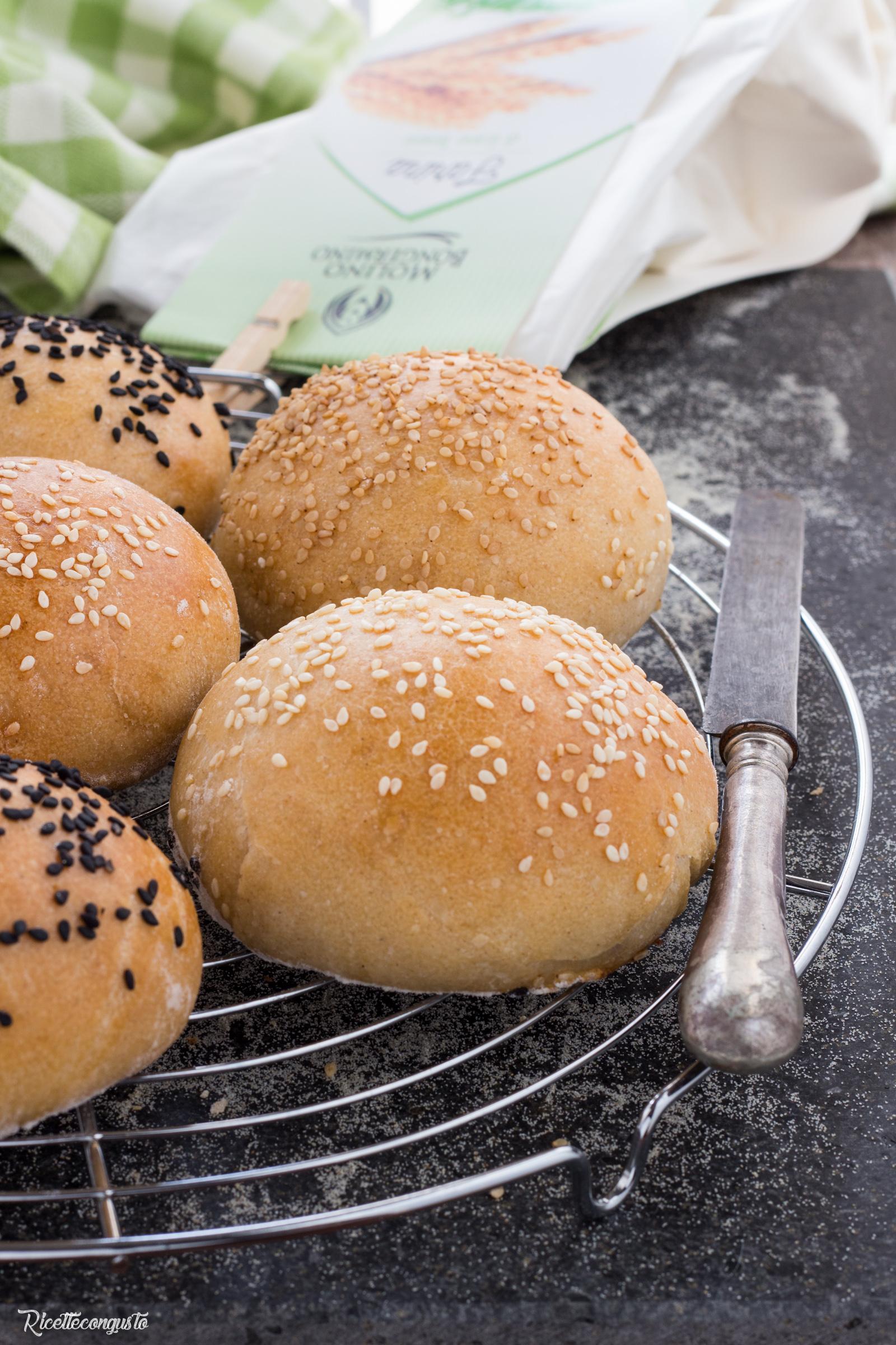 Panini per hamburger all'olio d'oliva