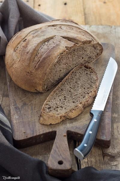 Pane con mix farine e cereali con lievito madre